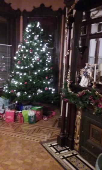 Alano Christmas 009