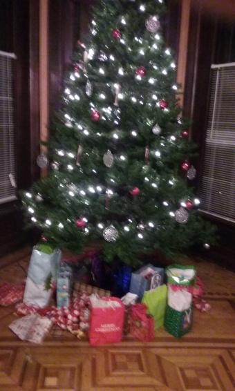 Alano Christmas 021